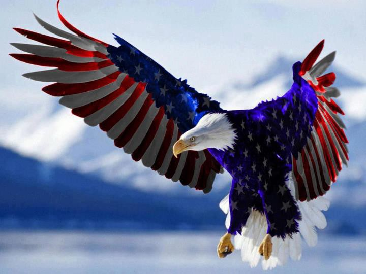 American-Eagle-Flag