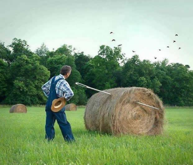 Needle Hay Stack  Haystack